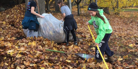 MMS Community Service Day November 8th